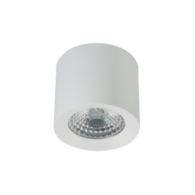 LED Ceiling Spot WW PWM  white