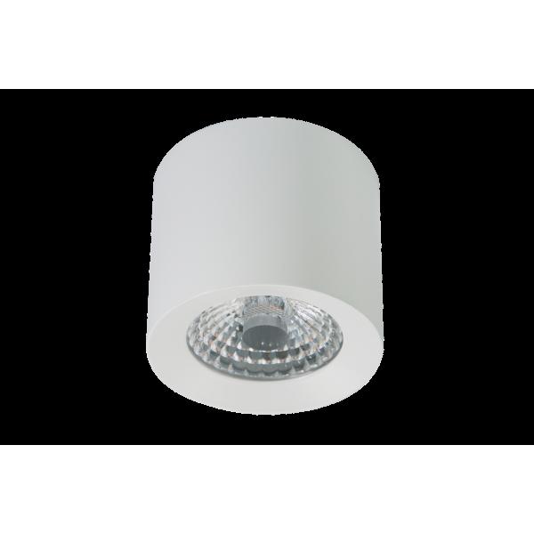 LED Ceiling Spot WW PWM  white