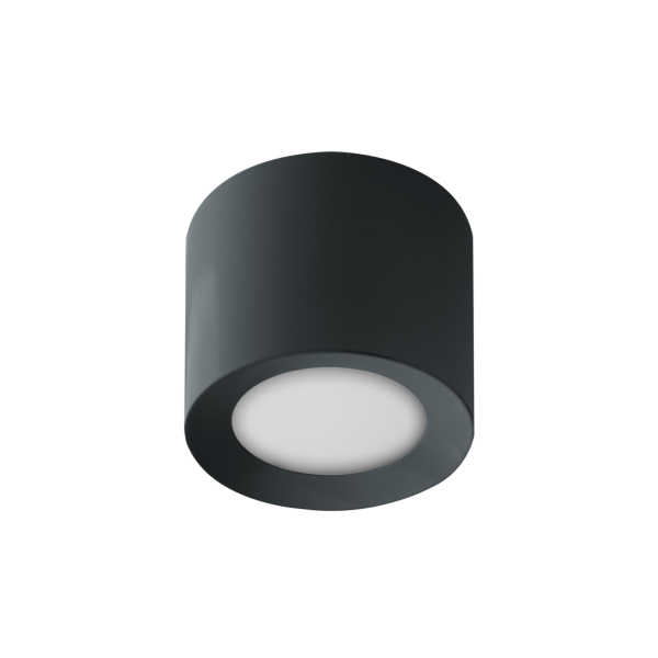 LED Ceiling Spot RGBW PWM Anthracit